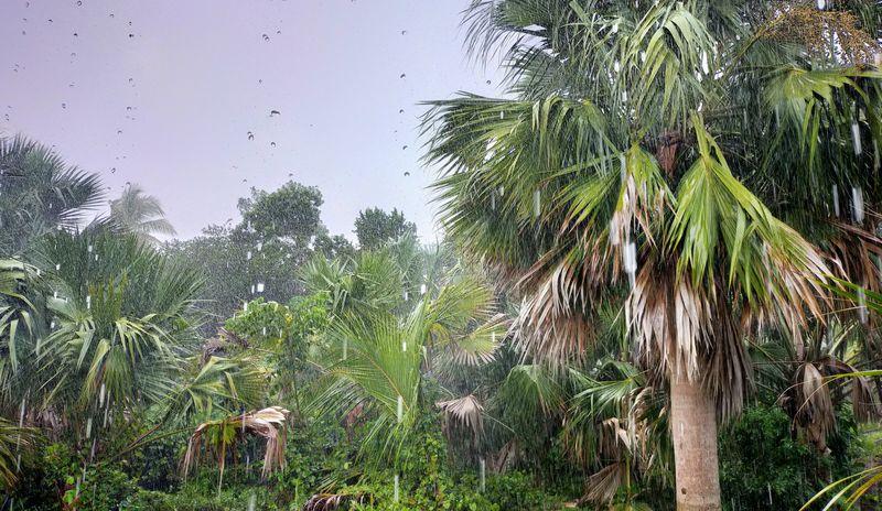 ラオスの雨季